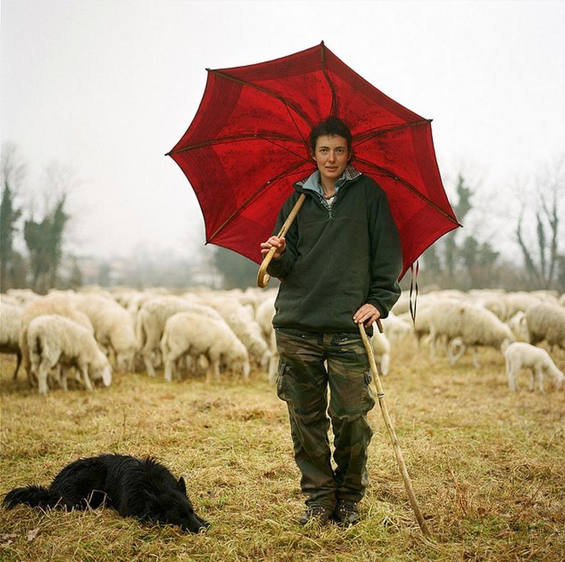 Il pastore Caterina De Bonis, Tesis, Pordenone