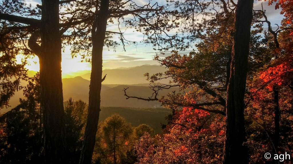 Tramonto nel bosco sull'Altpiano di Piné (foto con LG2)